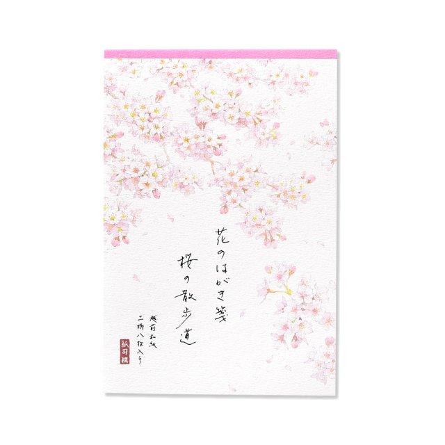 紙司撰 はがき箋 花のはがき箋 桜の散歩道 罫無