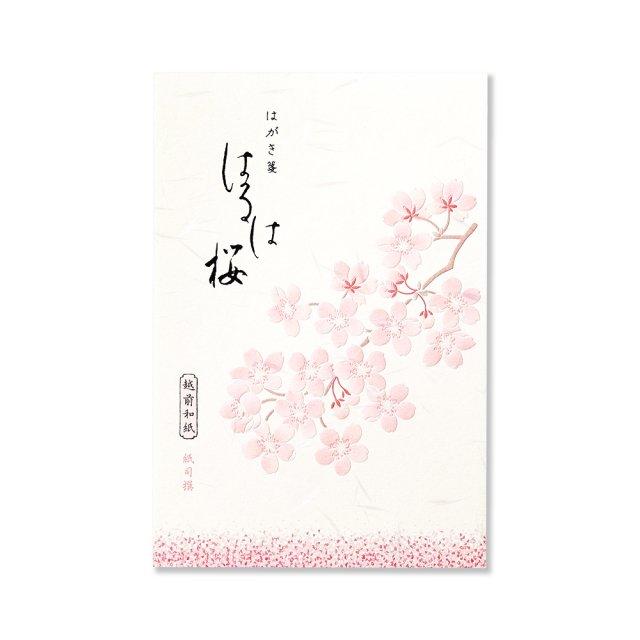 紙司撰 はがき箋 はるは桜