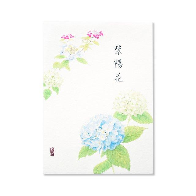紙司撰 便箋 紫陽花