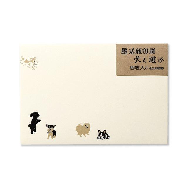 封筒 犬と遊ぶ