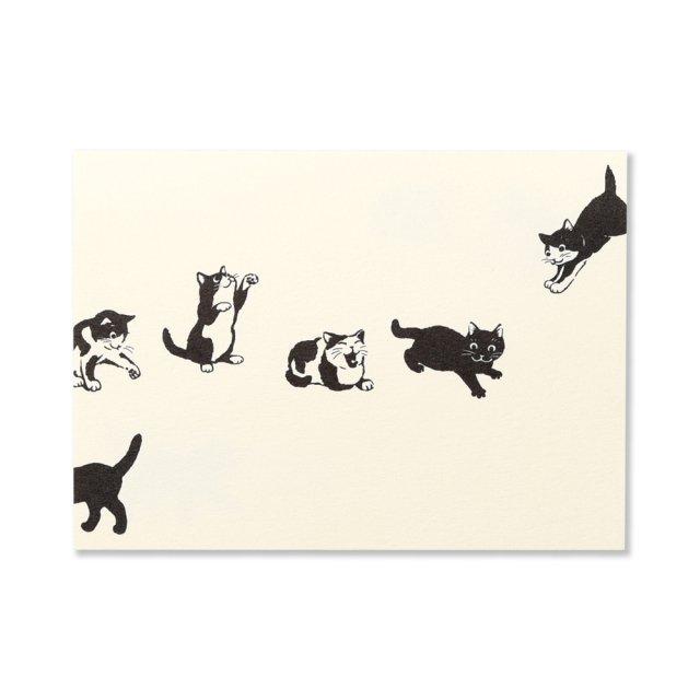 ふみ揃え便箋 猫と遊ぶ