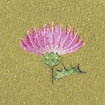 【ネコポス可】お弁当フロシキ・春刺繍 あざみ(わさび色)