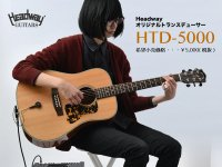 HTD-5000 ボリューム&トーン付きトランスデューサー