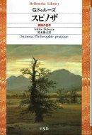 スピノザ 実践の哲学 <br>平凡社ライブラリー<br> ドゥルーズ