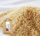 プレミアムヒノヒカリ玄米/5kg
