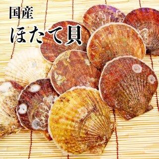 【冷蔵】ほたて貝 (30枚)