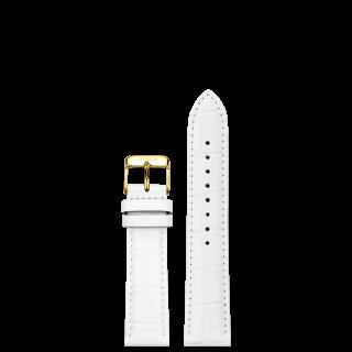 DYNASTY WHITE STRAP 16MM(GOLD)