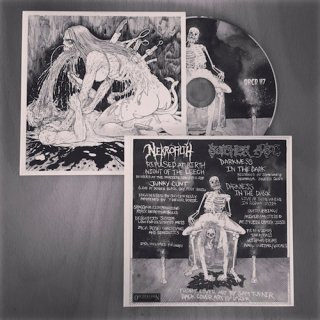 BUTCHER ABC / NEKROFILTH SPLIT CD