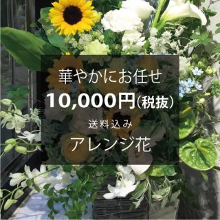 華やかにお任せ アレンジ花 ※送料込 No:100