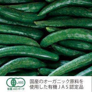 豆太郎有機きゅうり3kg