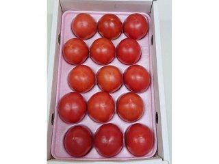 めちゃうまトマト約1.2kgギフト箱(糖度8度)
