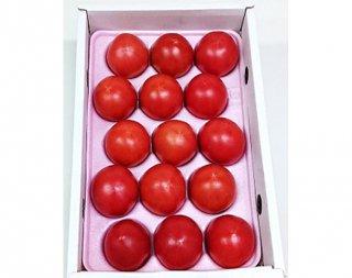 めちゃうまトマト約1.2kgギフト箱(糖度7度)