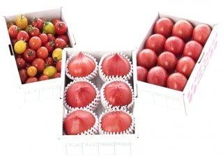 めちゃうまトマト食べ比べセット(500gx3箱)