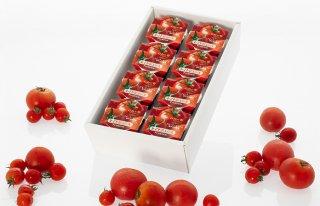 日向の雫プレミアムトマトジュース(8個)+ギフト箱