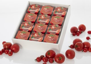 日向の雫プレミアムトマトゼリー(6個)+プレミアムトマトジュース(6個)+ギフト箱