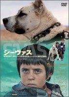 【DVD】シーヴァス 王子さまになりたかった少年と負け犬だった闘犬の物語