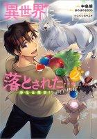 【9/15発売】異世界に落とされた…浄化は基本!@COMIC 第2巻(コロナ・コミックス)