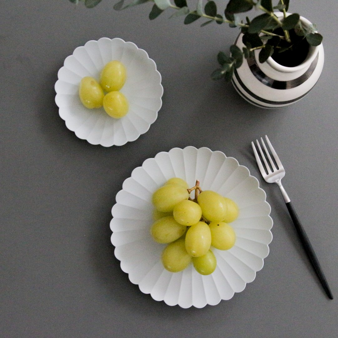 1616/arita japan TY パレス 160 & 220 各2枚(計4枚)セット【化粧箱入】