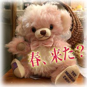 「 トイミュージアム・パンキンヘッド / Toy Museum Punkinhead 」* 2000年 * 香港トイ・ミュージアム限定ッコ!! *【 M-1700 】<img class='new_mark_img2' src='https://img.shop-pro.jp/img/new/icons11.gif' style='border:none;display:inline;margin:0px;padding:0px;width:auto;' />