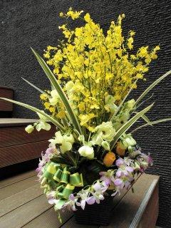 デザイナーお任せフラワーアレンジメント(生花)サイズW40×D35×H80