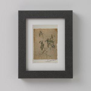 紙の額縁+青木一香ポストカード GAI002