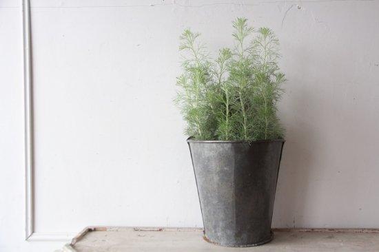 フランスアンティーク  ブリキの壁掛け用鉢カバー