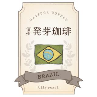 信州発芽珈琲 ブラジル 豆/粉