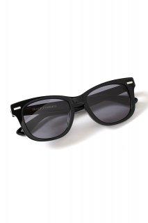 【ご予約】FIXER (フィクサー) BLACK PANTHER 925 SILVER サングラス BLACK × BLACK SMOKE (ブラック×ブラックスモーク)