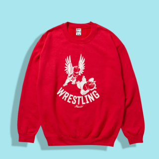 <img class='new_mark_img1' src='https://img.shop-pro.jp/img/new/icons15.gif' style='border:none;display:inline;margin:0px;padding:0px;width:auto;' />Owl Wrestling Crew