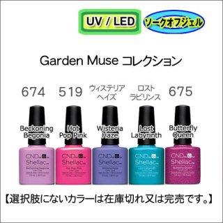 CND シェラック Garden Muse<br /><font color=red>23%OFF </font>