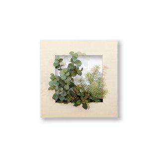 マイギャラリーM(フェイクグリーン:ガーデン)/ホワイトウッド