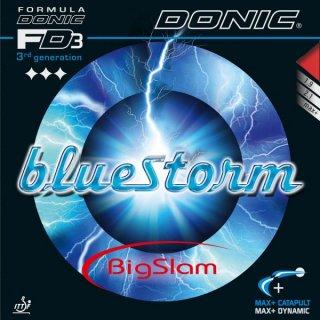 【DONIC】ブルーストーム ビッグスラム (Bluestorm Big Slam)