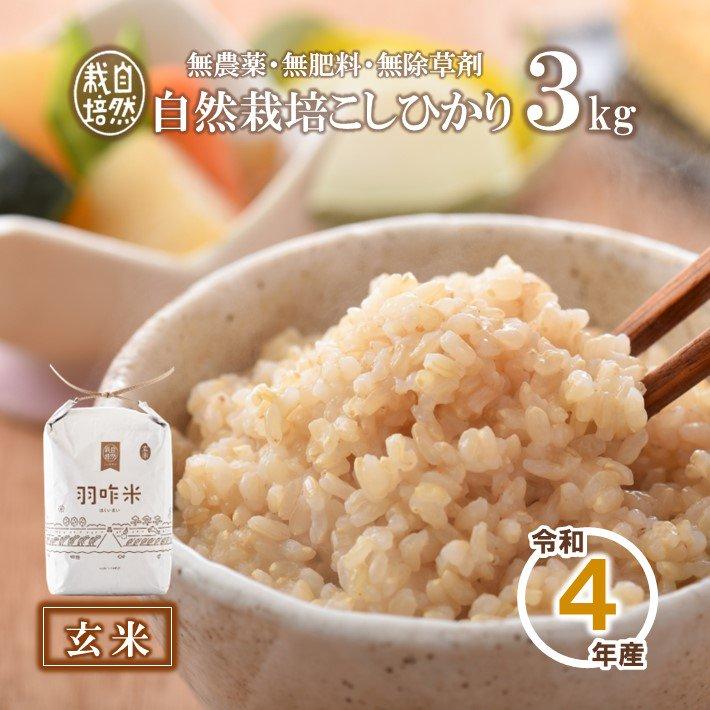 A002 令和2年産【無農薬】能登のこだわり自然栽培こしひかり『羽咋米(玄米)』 3kg