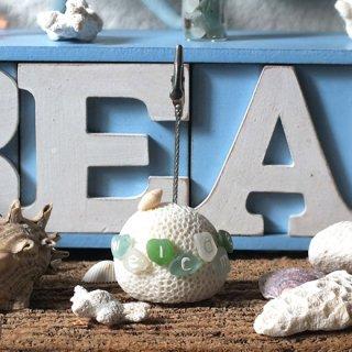 珊瑚(サンゴ)メモクリップスタンドオブジェ シーグラス WELCOME