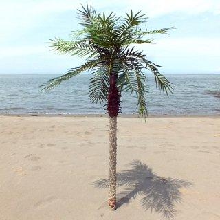 【同梱不可】フェニックスパームツリー ヤシの木/フェイクグリーンL
