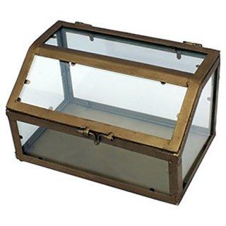 IRON アイアンフレーム ガラスケース ディスプレイ(S)