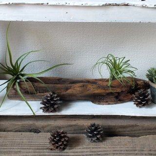 ドリフトウッド 海の木 流木古材 オブジェ/ディスプレイ A