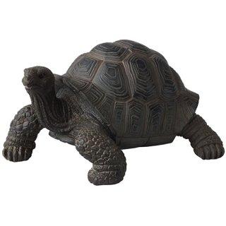 ゾウガメ フィギュア スモール/亀の置物 Small Tortoise figurine Giant tortoise Statue
