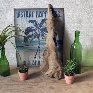 【1点もの】ドリフトウッド 海の木 流木 オブジェ/ディスプレイ「N-10」