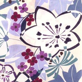 桜七軒浴衣反物・白地にポップな桔梗