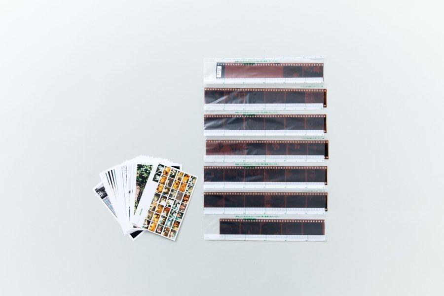 【35mm・36枚撮】カラーネガ現像・プリント・データ書き込み