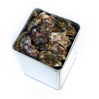 倉橋産生牡蠣殻付一斗缶(80個〜100個入り)