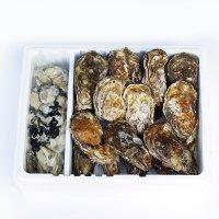 倉橋産生牡蠣殻つき20個+むき身1kg
