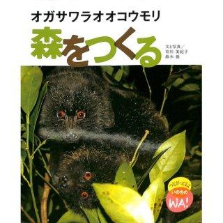 【50%OFF】オガサワラオオコウモリ森をつくる