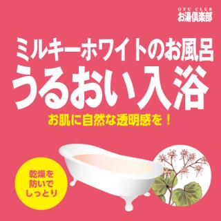 お湯倶楽部 うるおい入浴 16kg [受注生産品]