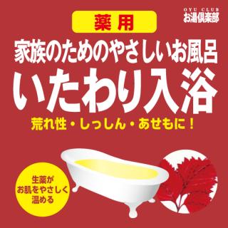 お湯倶楽部 いたわり入浴 16kg [受注生産品]