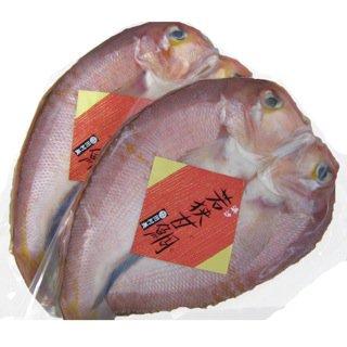 【若狭名物の甘鯛はやはり甘かった】浜汐若狭甘鯛(アカアマダイ) 1匹