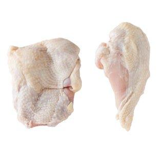 阿波尾鶏焼き物セット