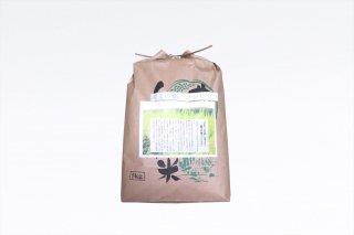 【令和2年度産】特別栽培米 縄文の郷コシヒカリ 5kg(常温)【エコ包装】