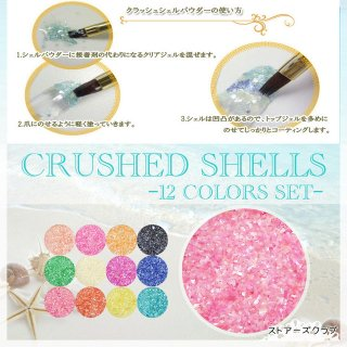 パウダーシェル 淡水貝殻12色セット クラッシュシェル小瓶入り レジン封入材